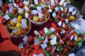 Photos de paniers de tomates diverses et variées